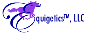 Equigetics LLC